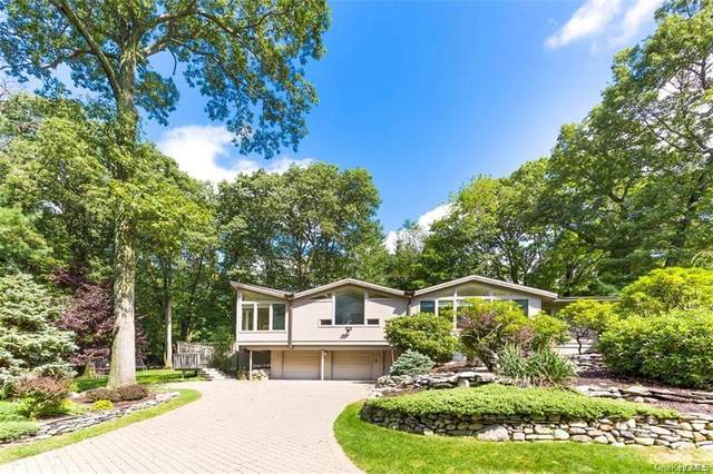 23 Halley Drive, Haverstraw Town, NY 10970 (MLS #H6042645) :: Signature Premier Properties