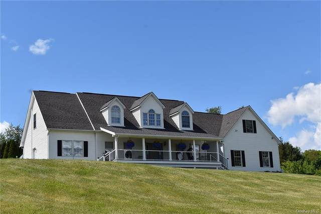 15 Camby Road, Verbank, NY 12585 (MLS #H6042768) :: Frank Schiavone with William Raveis Real Estate