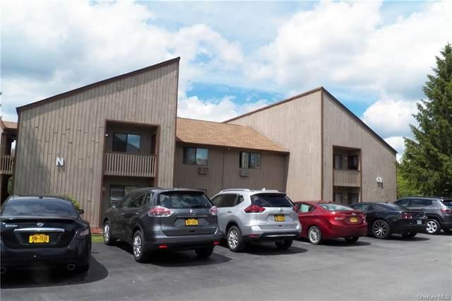 68 Davos Pointe, Fallsburg, NY 12789 (MLS #H6042813) :: Mark Boyland Real Estate Team