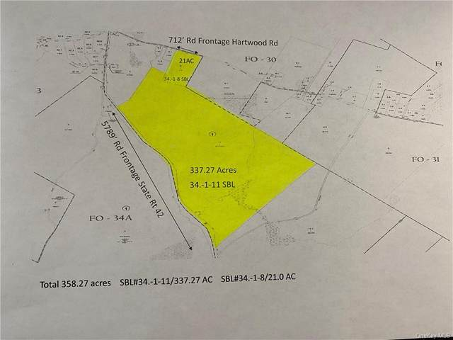 State Rte 42, Forestburgh, NY 12777 (MLS #H6042823) :: Signature Premier Properties