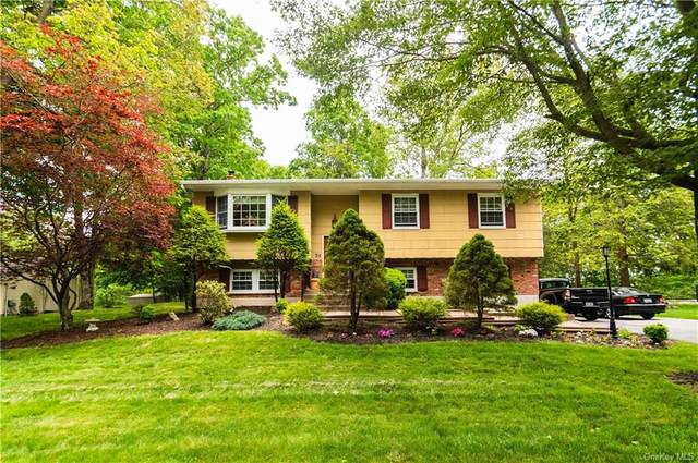 5 Fredrick Drive, Monroe Town, NY 10950 (MLS #H6042837) :: The Home Team