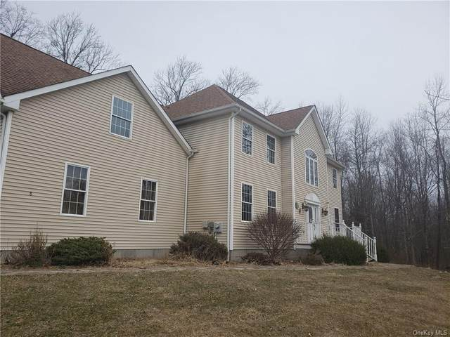 8 Carmel Drive, Newburgh Town, NY 12589 (MLS #H6042947) :: William Raveis Legends Realty Group