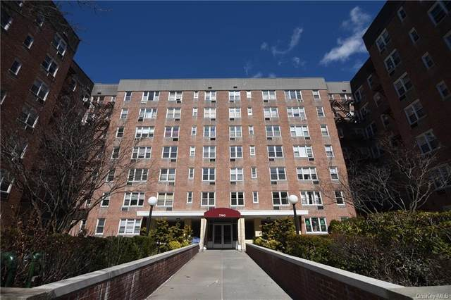 2 Sadore Lane 5R, Yonkers, NY 10710 (MLS #H6043023) :: William Raveis Legends Realty Group