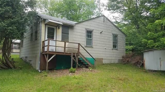 39 Mitteer Road, Fallsburg, NY 12747 (MLS #H6043175) :: Mark Boyland Real Estate Team