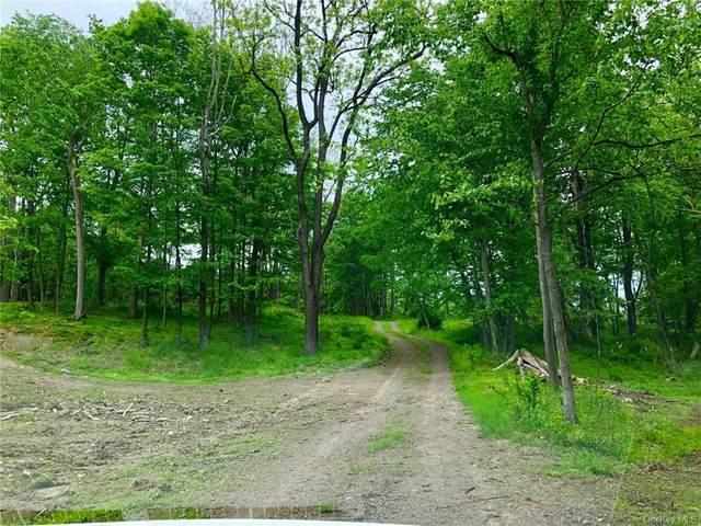481 Midland Lakes Road, Middletown, NY 10941 (MLS #H6043580) :: William Raveis Baer & McIntosh