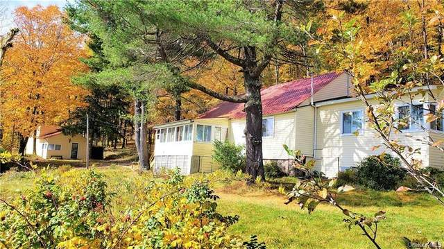 111 Porcupine Road, Grahamsville, NY 12740 (MLS #H6043602) :: Frank Schiavone with William Raveis Real Estate