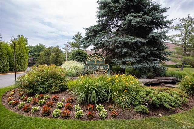 81 Timberline Drive, Clarkstown, NY 10954 (MLS #H6044095) :: William Raveis Baer & McIntosh