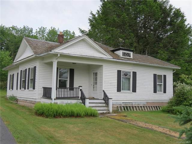 169 County Road 116, Cochecton, NY 12726 (MLS #H6044296) :: RE/MAX Edge