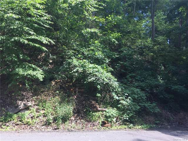 Nob Hill Road, Greenwood Lake, NY 10925 (MLS #H6044698) :: Frank Schiavone with William Raveis Real Estate