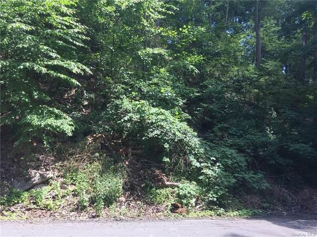 Nob Hill Road, Greenwood Lake, NY 10925 (MLS #H6044698) :: Kevin Kalyan Realty, Inc.