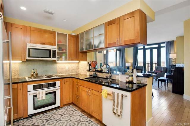 175 Huguenot Street #1207, New Rochelle, NY 10801 (MLS #H6044812) :: Cronin & Company Real Estate