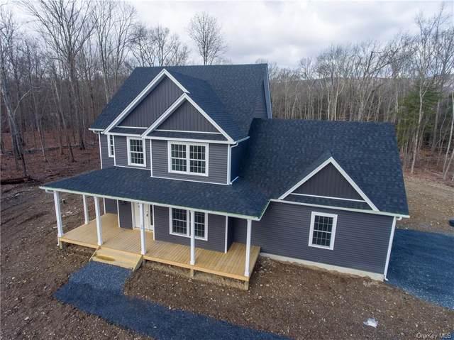 Lot #3 Shafer Court, Pine Bush, NY 12566 (MLS #H6044951) :: Mark Seiden Real Estate Team