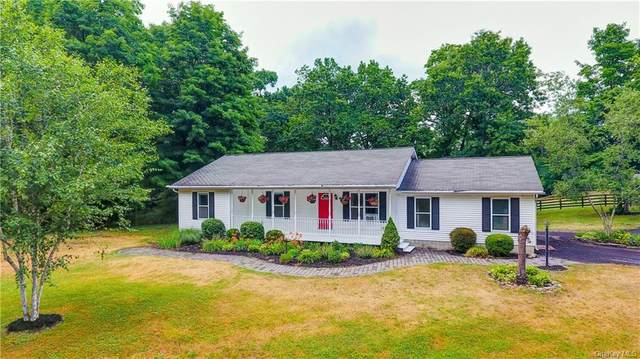 1 Reigning Hope Trail, Hamptonburgh, NY 10916 (MLS #H6045349) :: RE/MAX Edge
