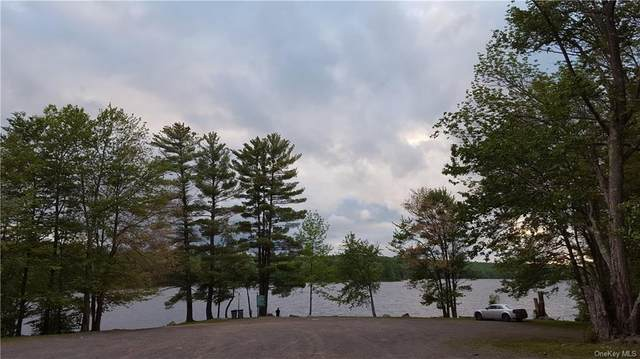 Starlight Road, Thompson, NY 12701 (MLS #H6045383) :: William Raveis Legends Realty Group
