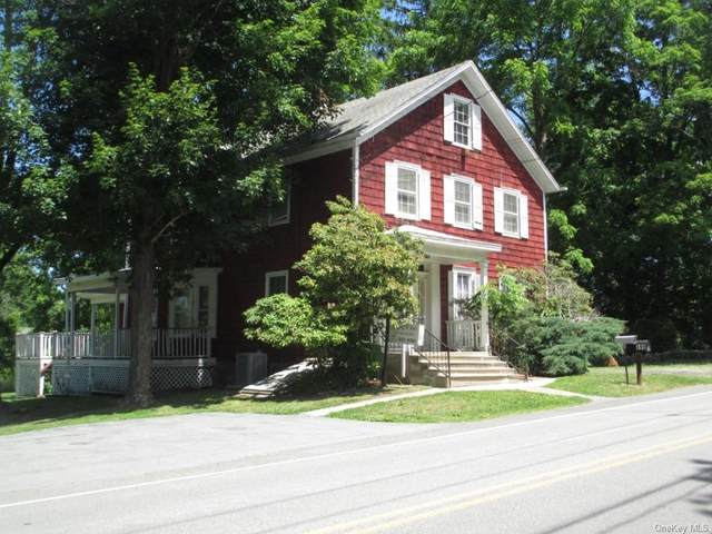 699 Ridgebury Road, Slate Hill, NY 10973 (MLS #H6045640) :: Cronin & Company Real Estate