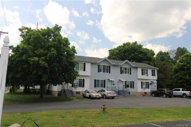 2 Yankee, Wawarsing, NY 12428 (MLS #H6045779) :: RE/MAX Edge
