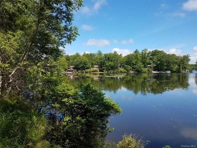 66 Lake Shore Drive E, Thompson, NY 12775 (MLS #H6045982) :: RE/MAX Edge