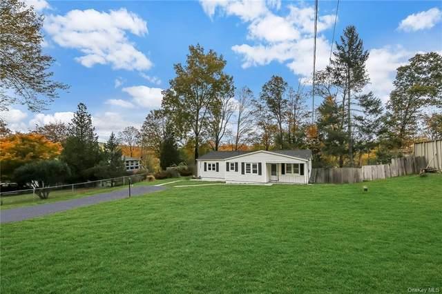 7 Dry Hill Lake Road, Monroe Town, NY 10950 (MLS #H6046338) :: William Raveis Baer & McIntosh