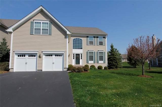 413 Vassar Place, Fishkill, NY 12524 (MLS #H6046361) :: RE/MAX Edge