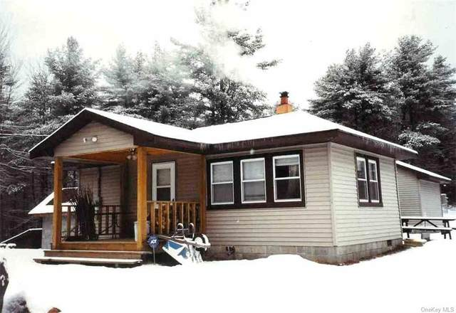 7300 Route 52, Wawarsing, NY 12435 (MLS #H6046412) :: William Raveis Legends Realty Group