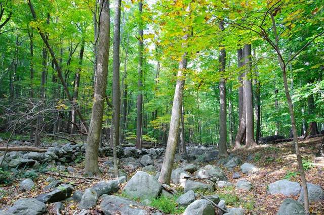 Lot 1 June Road, Call Listing Agent, CT 06903 (MLS #H6046598) :: Frank Schiavone with William Raveis Real Estate