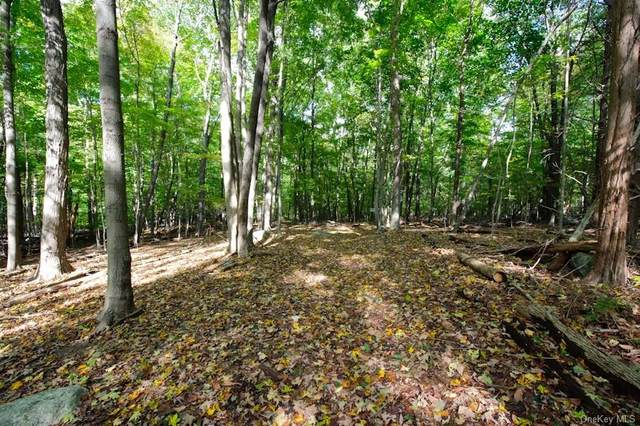 Lot 2 June Road, Call Listing Agent, CT 06903 (MLS #H6046599) :: Frank Schiavone with William Raveis Real Estate