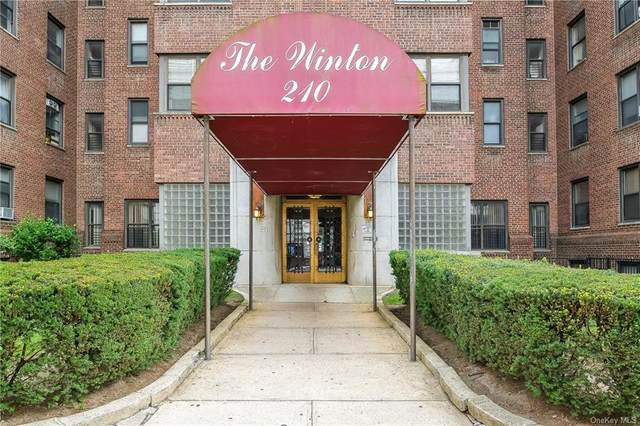 210 Martine Avenue 6B, White Plains, NY 10601 (MLS #H6046931) :: McAteer & Will Estates | Keller Williams Real Estate