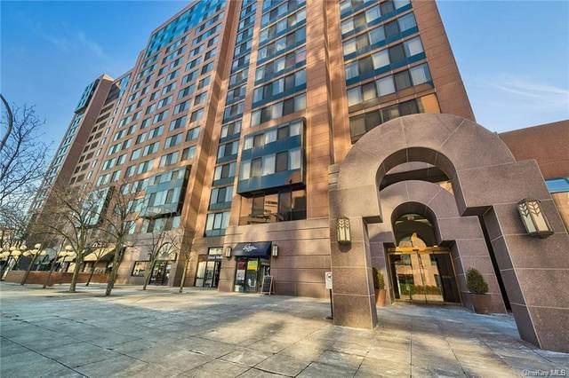 4 Martine Avenue #220, White Plains, NY 10606 (MLS #H6047084) :: Mark Seiden Real Estate Team