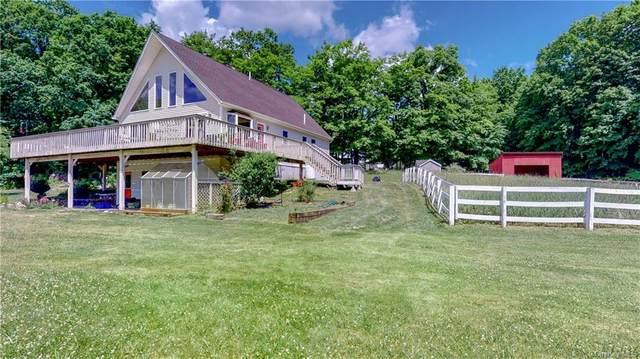314 Brimstone Hill Road, Shawangunk, NY 12566 (MLS #H6047206) :: William Raveis Baer & McIntosh
