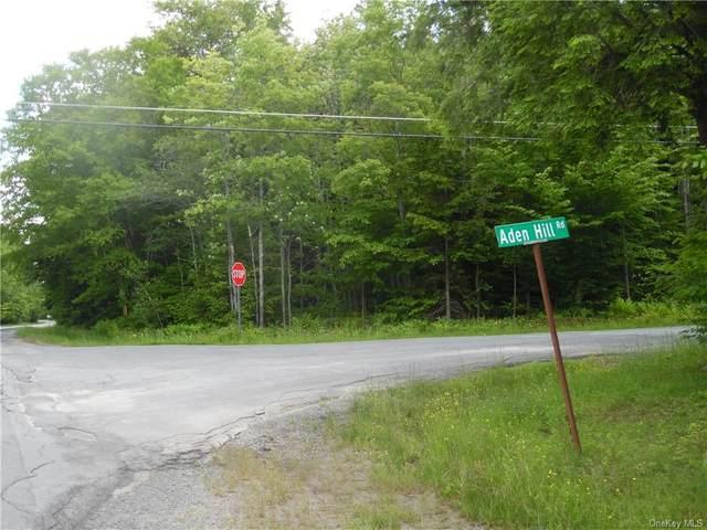 Cooley Road, Rockland, NY 12768 (MLS #H6047216) :: RE/MAX Edge