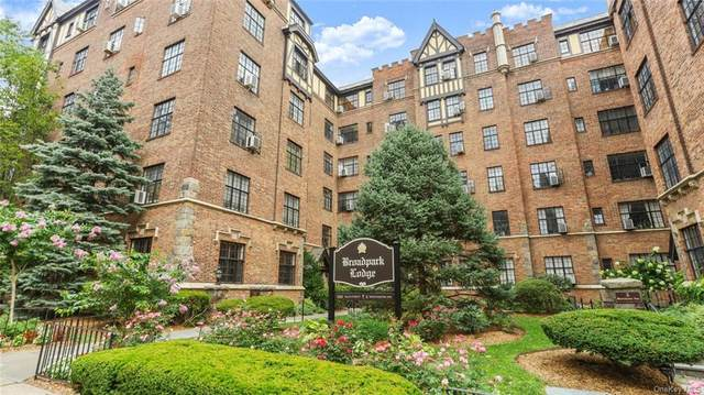 292 Main Street 3A, White Plains, NY 10601 (MLS #H6047499) :: William Raveis Legends Realty Group