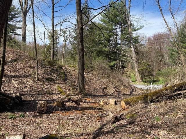 Grist Mill Road, Rosendale, NY 12472 (MLS #H6047535) :: William Raveis Baer & McIntosh