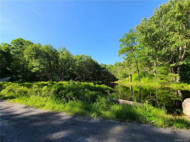 ** Chapin Trail, Bethel, NY 12720 (MLS #H6047708) :: William Raveis Legends Realty Group