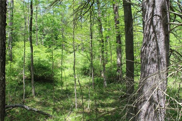 County Route 56, Mamakating, NY 12790 (MLS #H6047752) :: William Raveis Baer & McIntosh