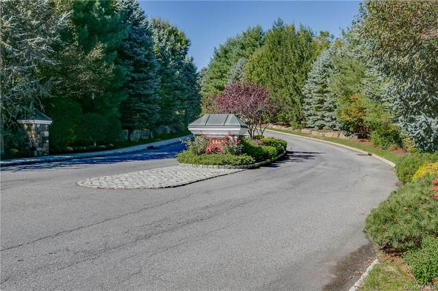 9 Agnew Farm Road, North Castle, NY 10504 (MLS #H6047767) :: The Home Team