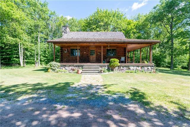233 Aden Hill Road, Neversink, NY 12765 (MLS #H6048065) :: Frank Schiavone with William Raveis Real Estate