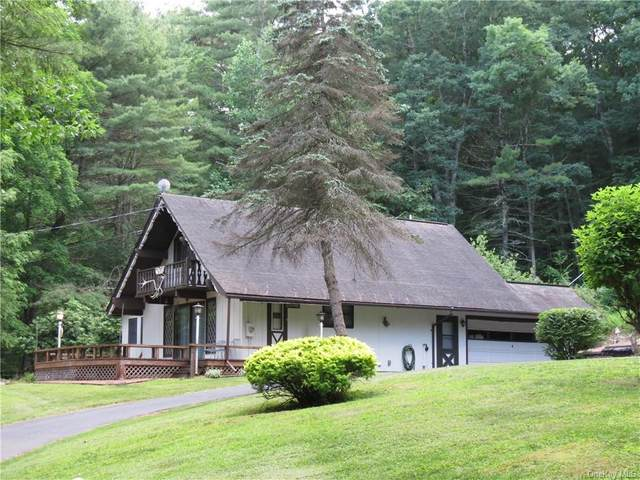 5739 State Route 97, Tusten, NY 12764 (MLS #H6048077) :: RE/MAX Edge