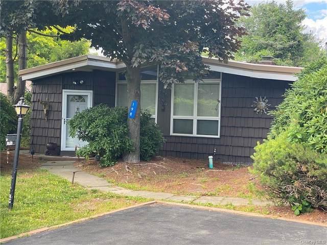198 Lake Shore Drive E, Thompson, NY 12775 (MLS #H6048127) :: The Home Team