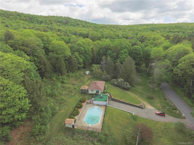 711 Kirchner Road, Other, NY 01226 (MLS #H6048156) :: Frank Schiavone with William Raveis Real Estate
