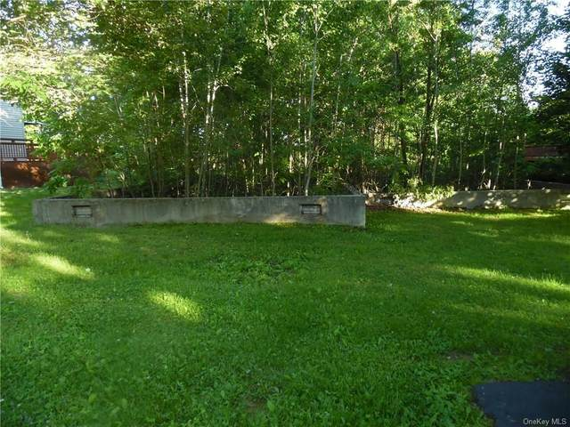 51 Clearwater Drive, Monticello, NY 12701 (MLS #H6048231) :: Nicole Burke, MBA | Charles Rutenberg Realty