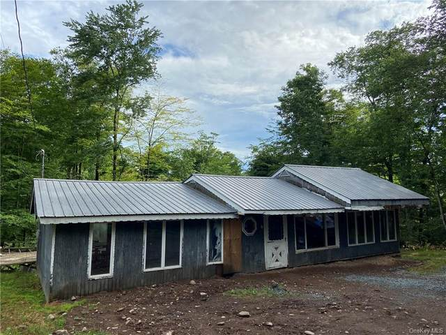 30 W Ozark Trail, Smallwood, NY 12778 (MLS #H6048262) :: William Raveis Baer & McIntosh