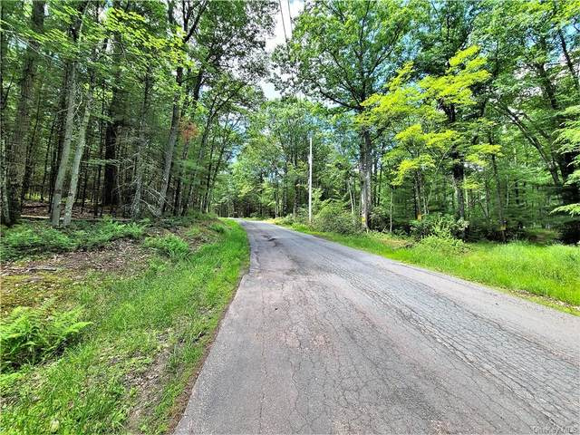 ** Pucky Huddle Road, Bethel, NY 12720 (MLS #H6048273) :: William Raveis Legends Realty Group