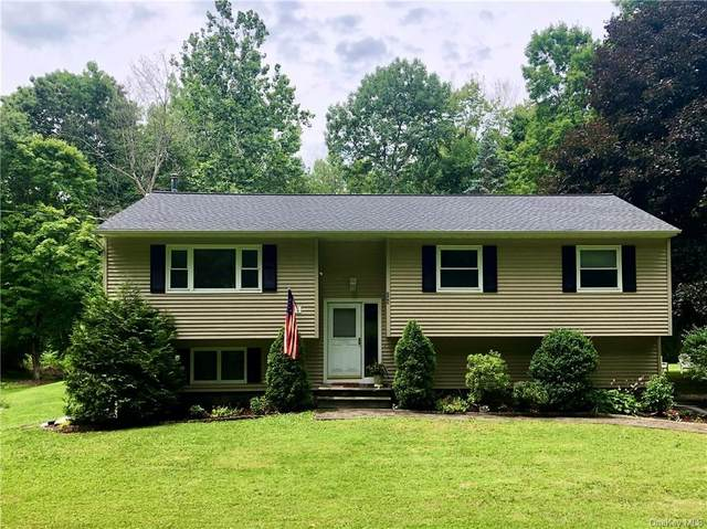 289 Gage Road, Brewster, NY 10509 (MLS #H6048297) :: Frank Schiavone with William Raveis Real Estate
