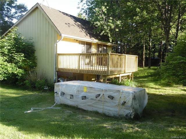 24 Laura Lane, Kiamesha Lake, NY 12751 (MLS #H6048339) :: William Raveis Baer & McIntosh