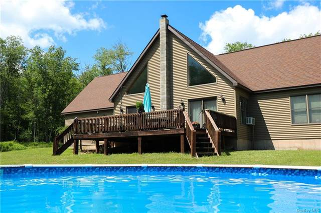 53 Skyline Drive, Rockland, NY 12758 (MLS #H6048343) :: William Raveis Legends Realty Group