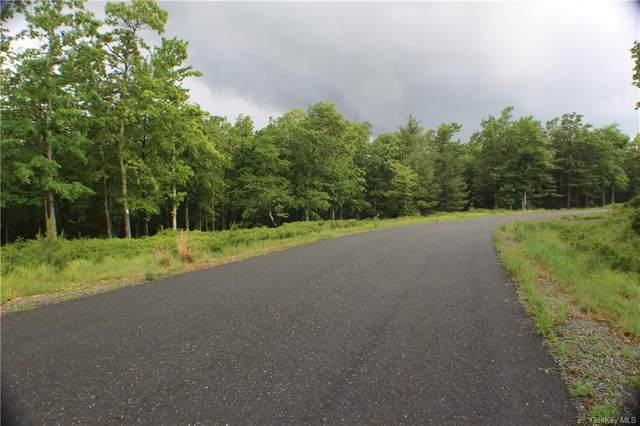 Big Rock Drive, Mamakating, NY 12790 (MLS #H6048538) :: William Raveis Legends Realty Group