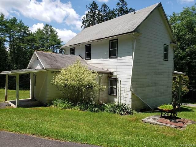 28 Highland Lake Road, Highland, NY 12743 (MLS #H6048679) :: William Raveis Baer & McIntosh
