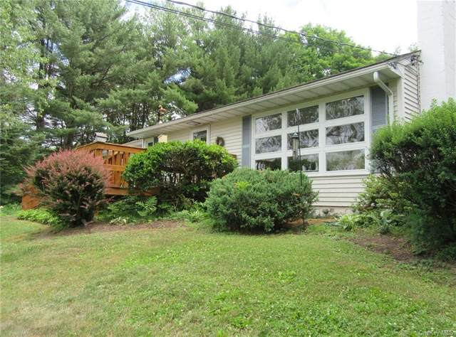 258 Crum Elbow Road, Hyde Park, NY 12538 (MLS #H6048696) :: RE/MAX Edge