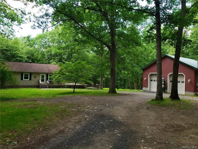 114 Homeyer Road, Lumberland, NY 12780 (MLS #H6048699) :: William Raveis Baer & McIntosh