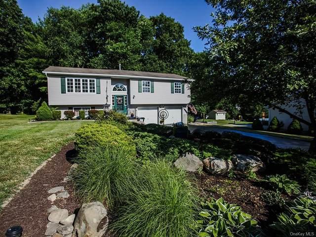 16 Princeton Drive, Montgomery Town, NY 12586 (MLS #H6048848) :: RE/MAX Edge
